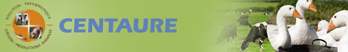 Centaure bandeau logiciel image